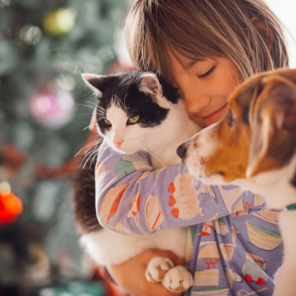 The pretty girl embarcing cat and dog